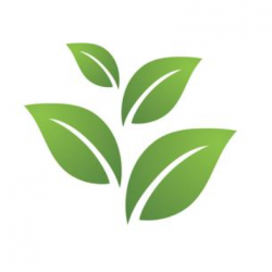 Capture d'écran 2020-11-18 à 11.01.59